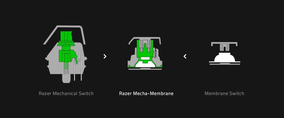 The Razer Mecha membrane switch compared